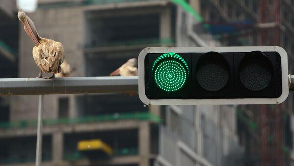Зеленый свет на светофоре, фото из архива - Sputnik Азербайджан