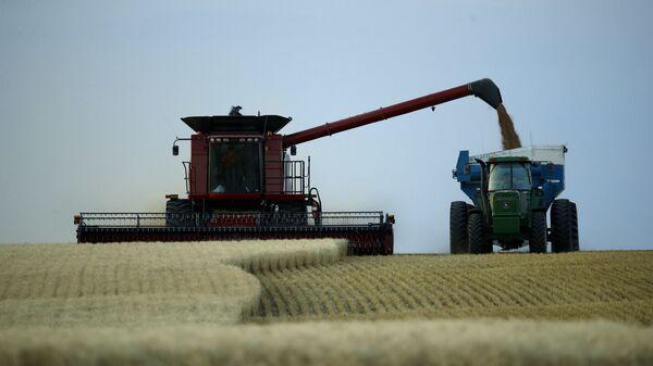 Сбор пшеницы, фото из архива - Sputnik Азербайджан