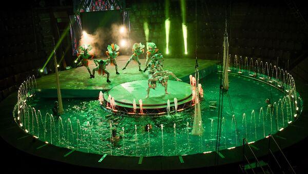 Бакинский цирк открывает сезон водным шоу - Sputnik Азербайджан