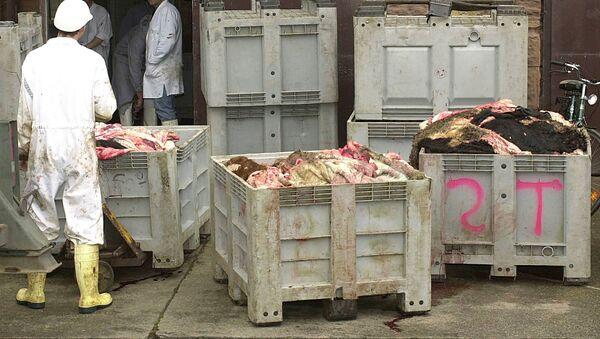 Контейнеры с потрохами животных, фото из архива - Sputnik Азербайджан