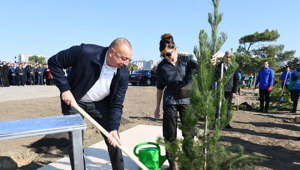 Президент Ильхам Алиев и Первая леди Мехрибан Алиева приняли участие в акции по посадке деревьев в Хатаинском районе Баку - Sputnik Азербайджан