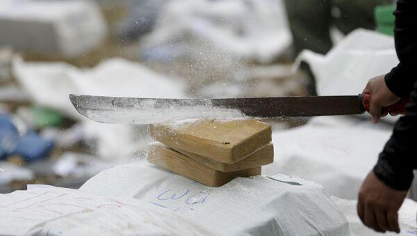 Уничтожение наркотиков, фото из архива - Sputnik Азербайджан
