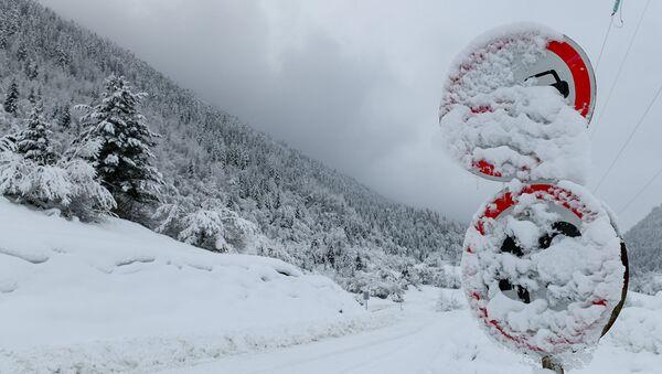 Занесенный снегом дорожные знаки - Sputnik Азербайджан