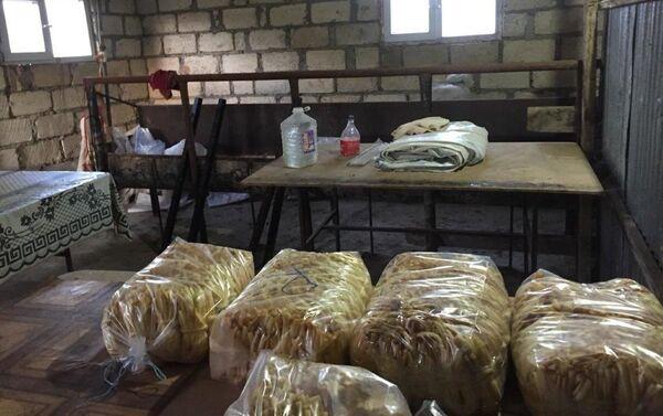 Цех по производству сыра, не соблюдавший санитарные и производственные нормы - Sputnik Азербайджан