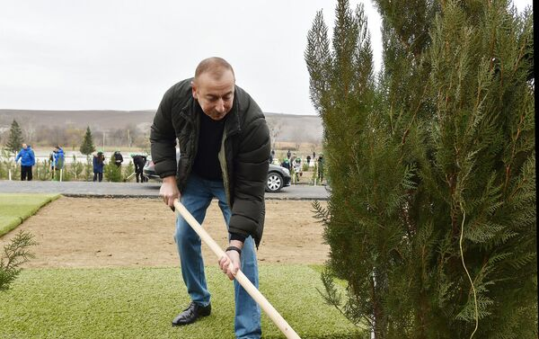 Президент Азербайджана Ильхам Алиев и Первая леди Мехрибан Алиева приняли участие в акции по посадке деревьев в Шамахинском районе - Sputnik Азербайджан