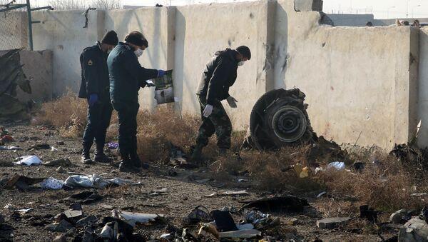 Спасатели на месте крушения самолета в Иране - Sputnik Азербайджан