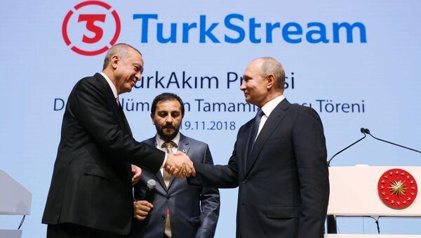 Президент России Владимир Путин и президент Турции Реджеп Тайип Эрдоган на церемонии официального открытия газопровода Турецкий поток - Sputnik Азербайджан