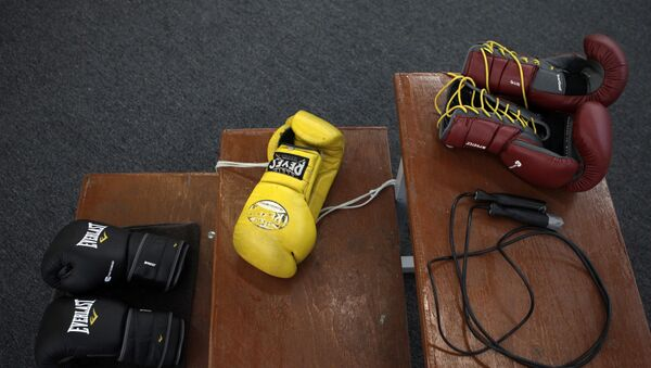 Боксерские перчатки, фото из архива - Sputnik Азербайджан