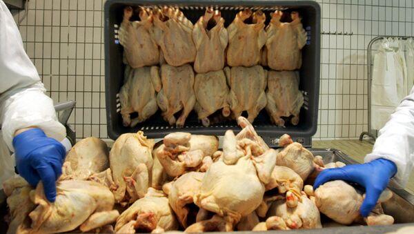 Рабочие птицефабрики сортируют курятину - Sputnik Азербайджан