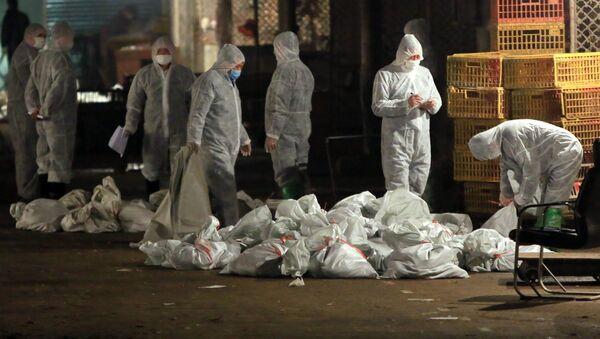 Уничтоженные птицы из-за птичьего гриппа в Китае  - Sputnik Azərbaycan