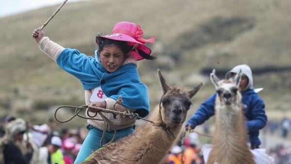 Участница традиционных скачек на ламах в национальном парке Лланганат, Эквадор - Sputnik Azərbaycan