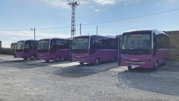 İsuzu Novociti markalı avtobuslar - Sputnik Azərbaycan