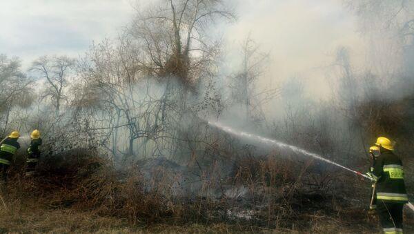 Во время тушения пожара - Sputnik Азербайджан