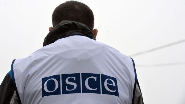 Представитель ОБСЕ, фото из архива - Sputnik Азербайджан