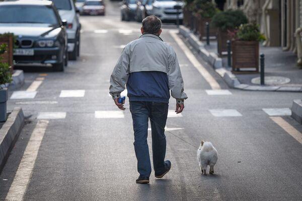 Мужчина с собакой в Баку, фото из архива - Sputnik Азербайджан