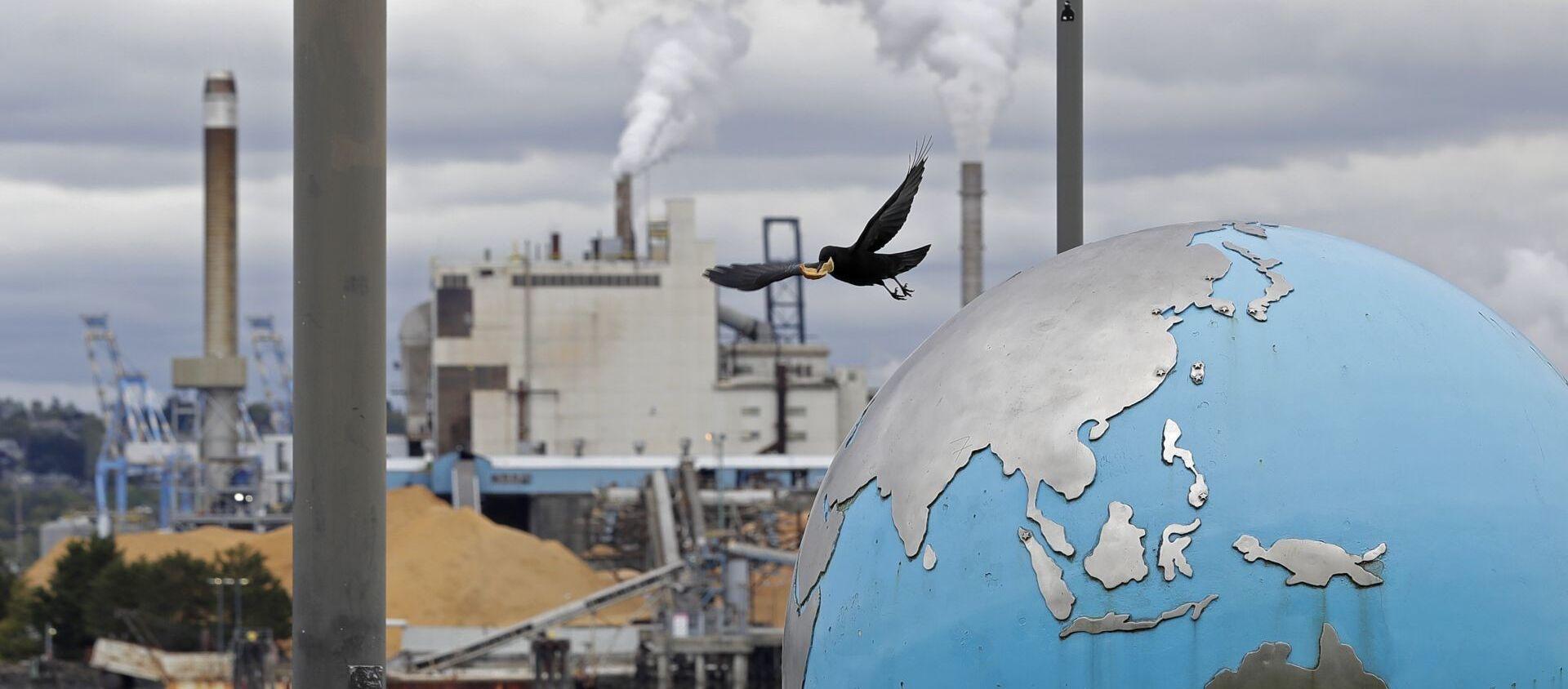 Птица взлетает со скульптуры земного шара в на фоне бумажной фабрики WestRock, фото из архива - Sputnik Азербайджан, 1920, 07.04.2021