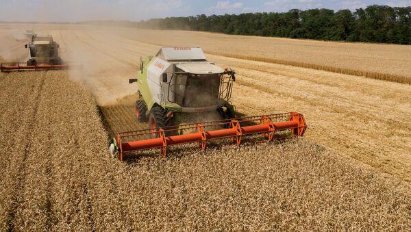 Уборка пшеницы в Краснодарском крае, фото из архива - Sputnik Азербайджан