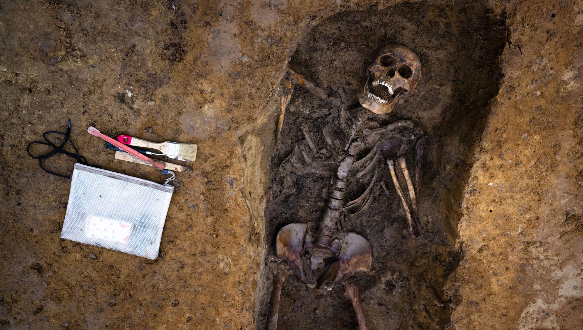 Скелет человека, фото из архива - Sputnik Azərbaycan, 1920, 15.09.2021