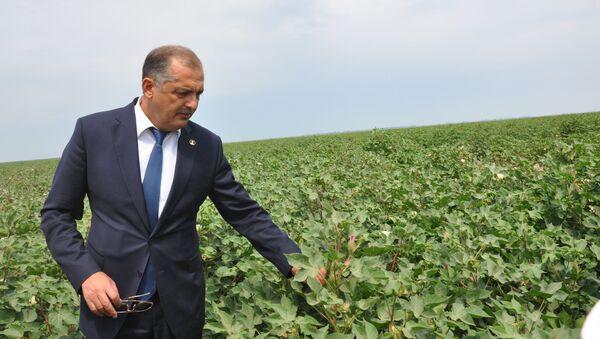 Экс-глава Исполнительной власти Имишлинского района Вильям Гаджиев, фото из архива - Sputnik Азербайджан