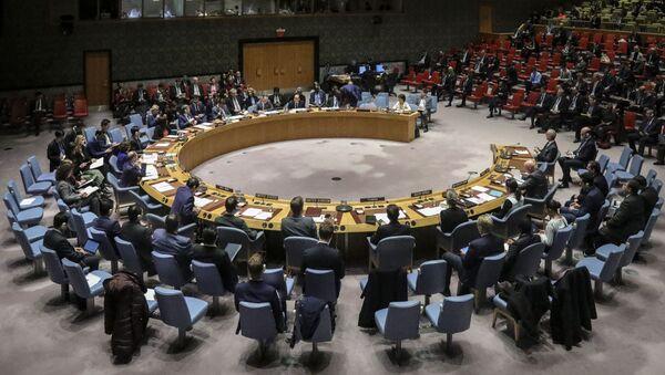 Заседание Совета безопасности ООН - Sputnik Azərbaycan