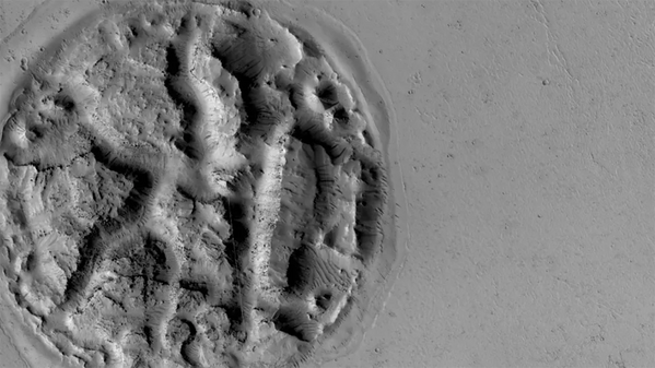 Загадочный рельеф в виде вафли на поверхности Марса  - Sputnik Азербайджан
