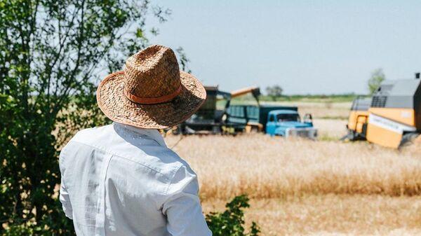 Уборка урожая зерновых - Sputnik Азербайджан