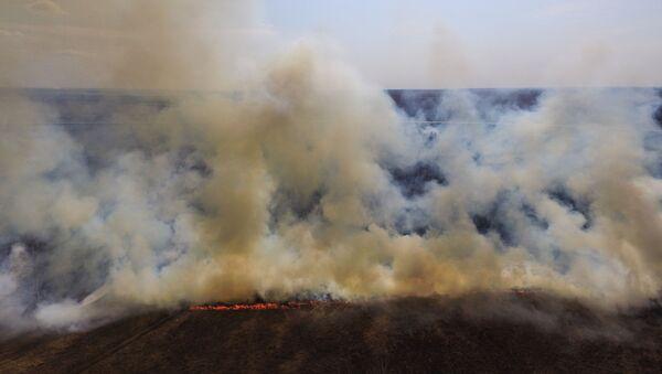 Полевые пожары, фото из архива - Sputnik Азербайджан