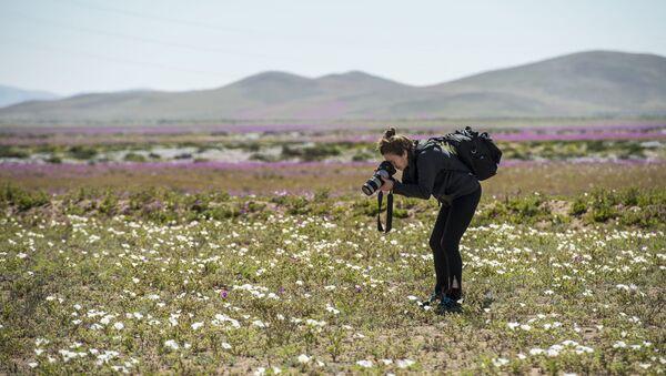 Женщина фотографирует цветы, фото из архива - Sputnik Азербайджан